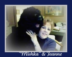 'MISHKA' helping me on the computer!   (Mishka Mishka has gone to the (Rainbow Bridge. We miss our Mishka!)