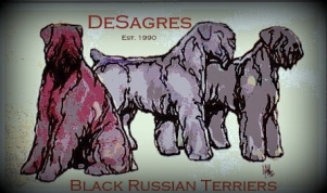 DeSagres Black Russian Terrier Logo.